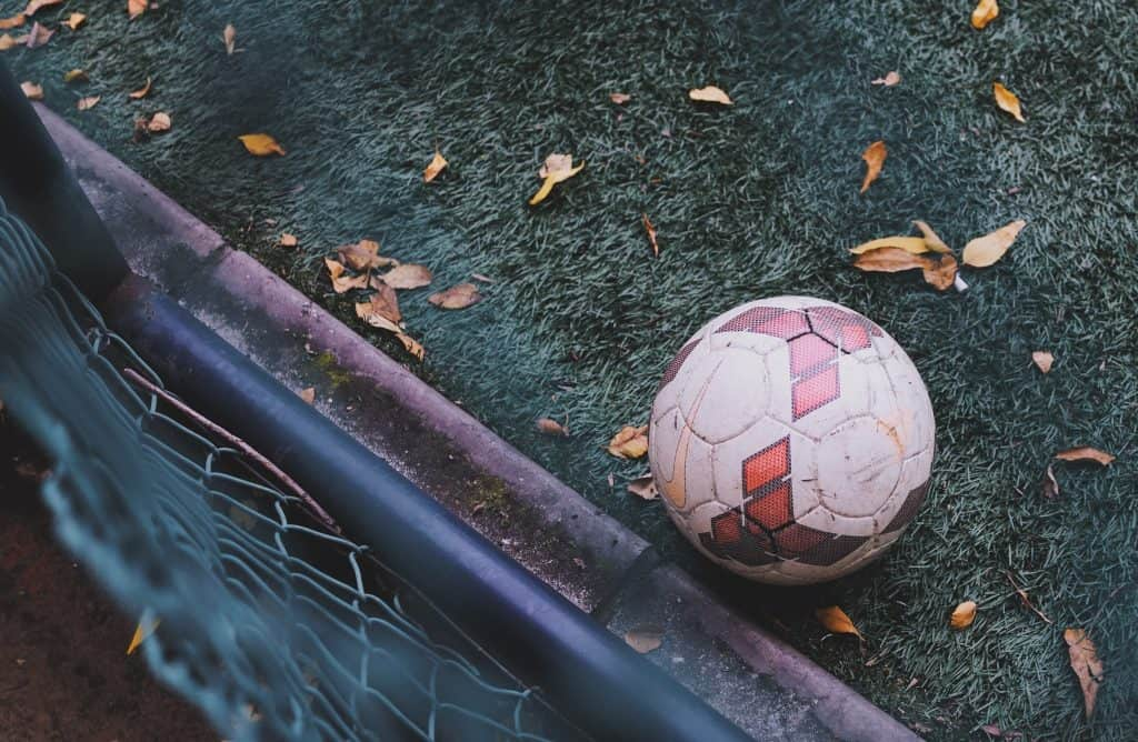 White and red soccer ball amidst a soccer goal, a grass and some fallen leaves
