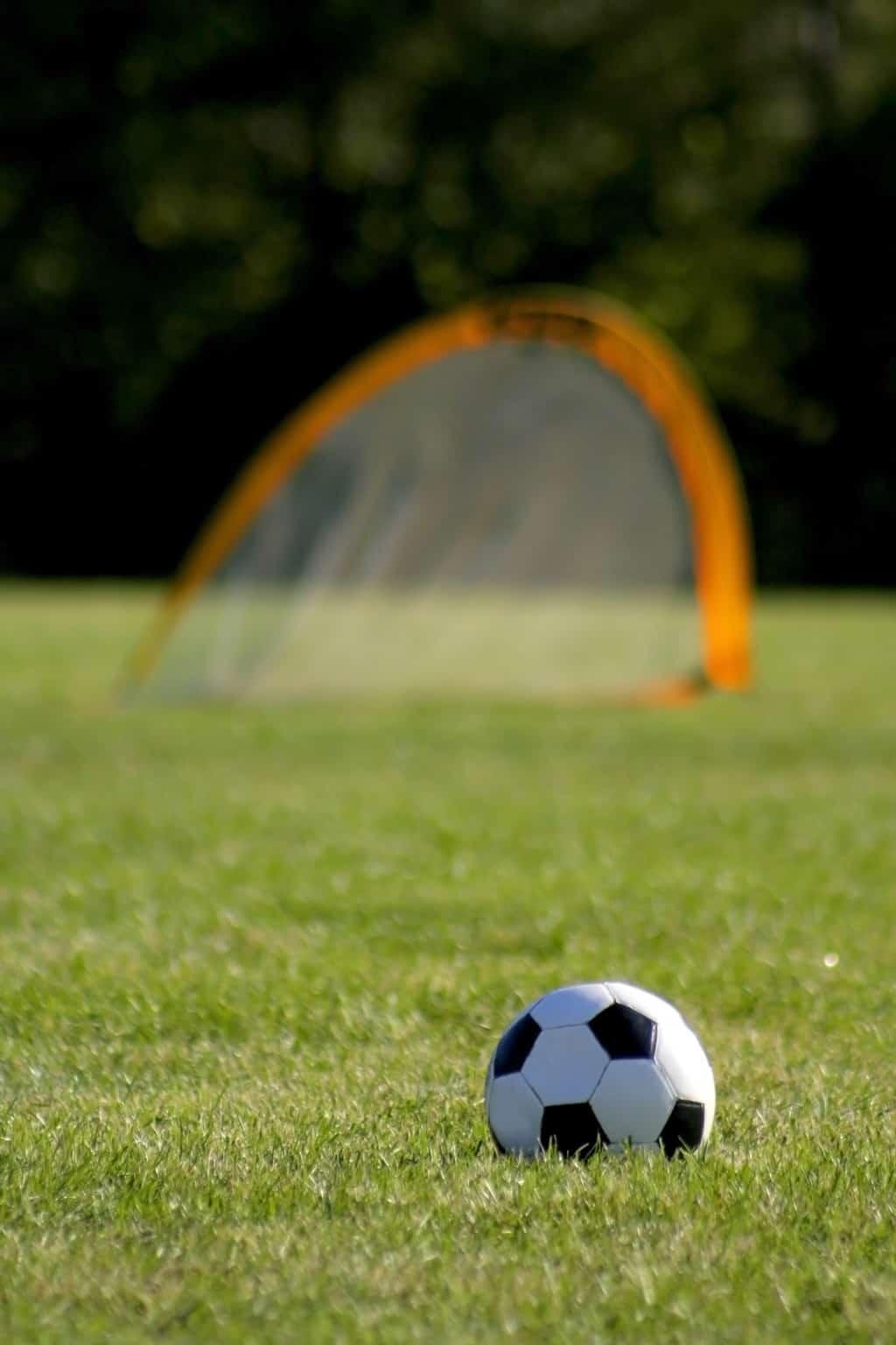 soccer ball in front of a soccer rebounder