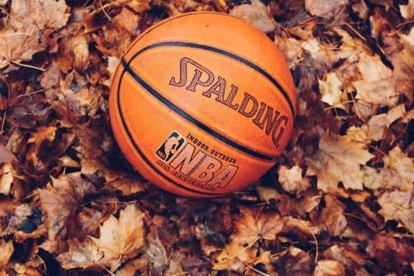 A basketball lying on dried leaves