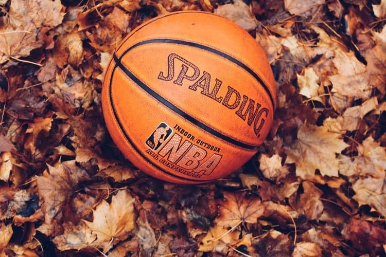 Clean basketball laid down on a bed of leaves