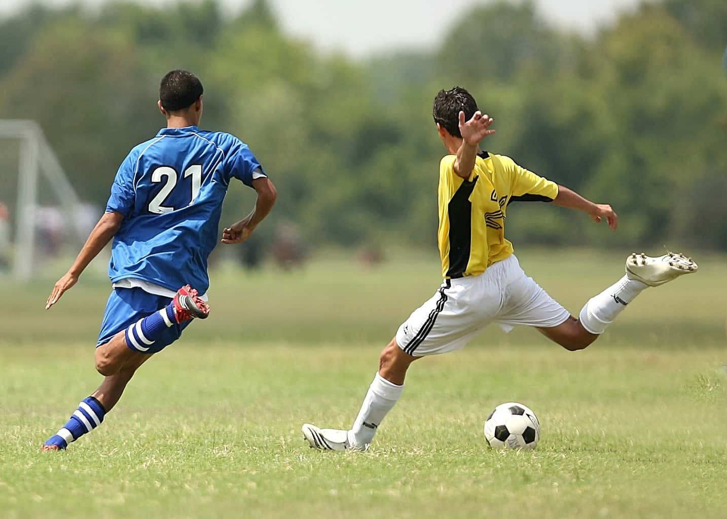 Two players trying to steal the ball from each other during a soccer game