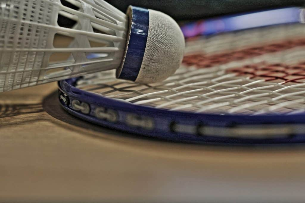A closeup image of a shuttlecock and a racket, both included in a badminton set