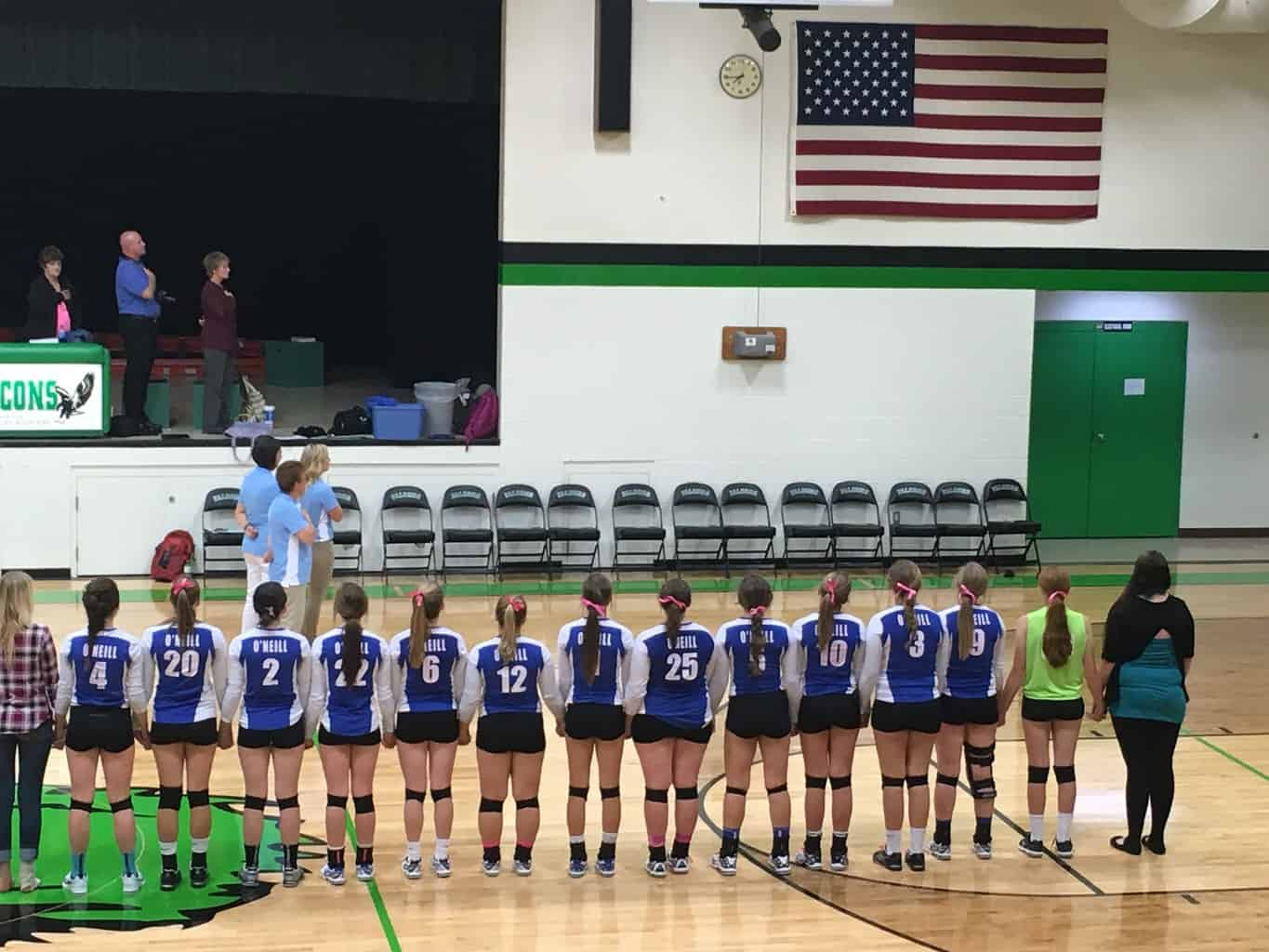 Volleyball players lined up