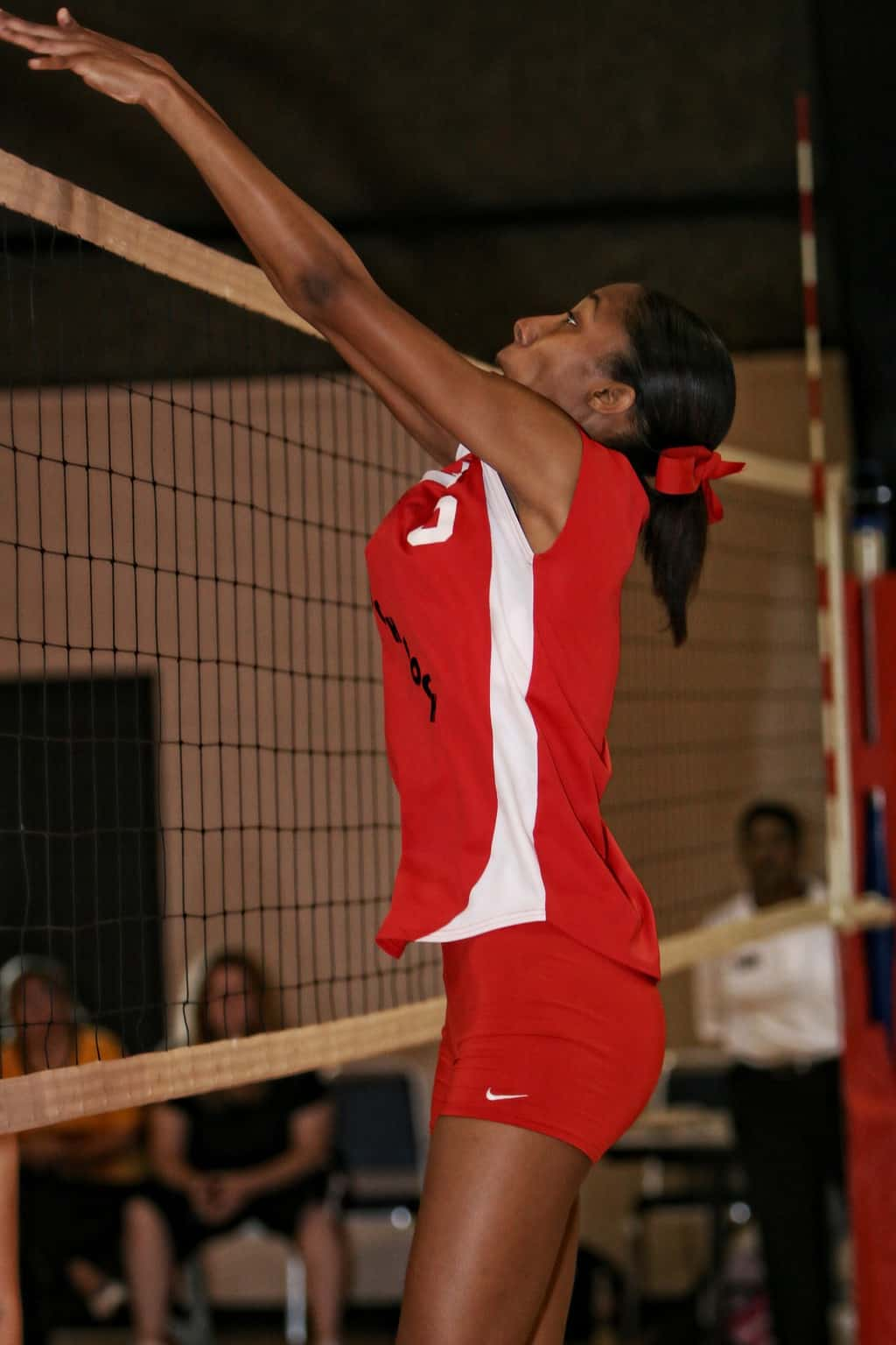 Volleyball player blocking at the net